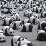 google-panda-update