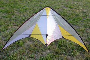 Kites around the world: Delta